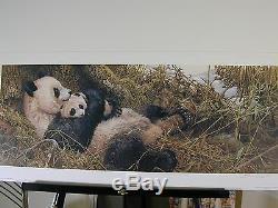 Panda Trilogy John Seery-lester 3 Print Set Limited Edition Art