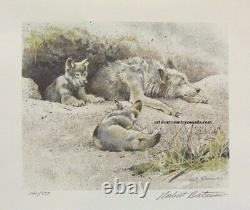 Robert BATEMAN Wolf Predator 3 Print art set LTD Edition original Hand Coloured